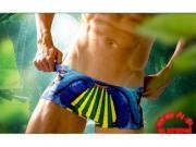 Мужские плавки боксеры разноцветные с попугаем Aussiebum Swimwear Paradise Parrot