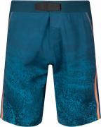 Шорты пляжные мужские O'Neill Hyperfreak Hydro, размер 54-56