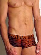 Мужские трусы-хипсы «Doreanse Wild» тигровые 1820c01