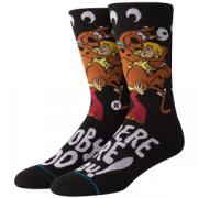 Носки STANCE FOUNDATION WHERE ARE YOU