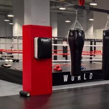Классическая FightTech подушка ПВХ WB4 – фото 1