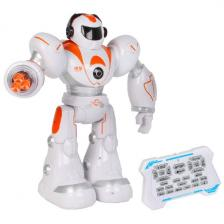 Программируемый робот Blue Well Trade Limited Прометей с пультом д/у HK Leyun 99888-2