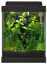 Aqua Gessa Аква Гесса Нано аквариум 10л черный