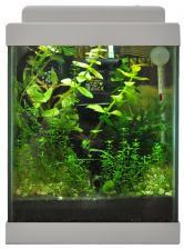 Aqua Gessa Аква Гесса Нано аквариум 20л серый