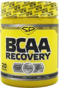Спортивное питание Steel Power BCAA Recovery, аминокислоты 250 г