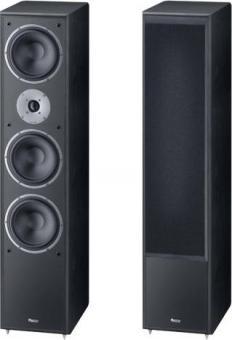 напольная акустика Magnat MS 1002